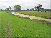 SO8844 : The Croome River flowing through Croome Park by Trevor Rickard