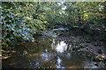 SD7313 : Bradshaw Brook by Bill Boaden