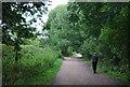 TQ2376 : Walking on the Thames Path by N Chadwick