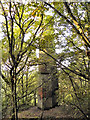 SD7703 : Fletcher's Folly, Clifton Country Park by David Dixon