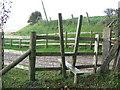 TR0835 : V stile near Honeypot Farm by David Anstiss