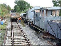 SK3046 : Ecclesbourne Valley Railway, Shottle by Dave Hitchborne