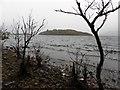 G8854 : Rusheen Point, Lough Melvin by Kenneth  Allen