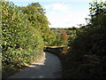 TQ3930 : Birchgrove Lane towards Chelwood Gate by Dave Spicer