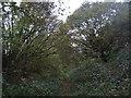 TR1536 : Footpath to Sandling Station (2) by David Anstiss
