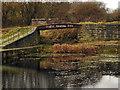 SD7506 : Manchester, Bolton & Bury Canal, Footbridge by David Dixon