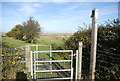 TQ8968 : Saxon Shore Way off Raspberry Hill Lane by N Chadwick