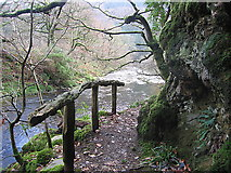 SN7673 : Path in the Ystwyth gorge by Rudi Winter