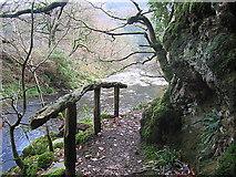 SN7673 : Path in the Ystwyth gorge by Rudi Winter