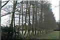 SU7579 : Field boundary at Bolney by Graham Horn