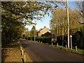 SU9686 : Christmas Lane by Derek Harper