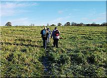 SJ5364 : Field footpath near Clotton by michael ely