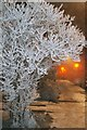 SK3430 : Frozen Wragley Way by ROSE BEAVAN