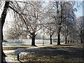 SP2872 : Frost on avenue of trees leading to swimming pool by John Brightley