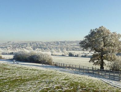 SO9095 : Farmland south of Colton Hills, Wolverhampton by Roger  Kidd