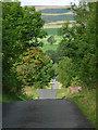 NY8278 : Country road near Wark (1) by Stephen Richards