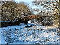 SD7706 : Canal Bridge Number 16 by David Dixon