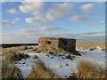 TG4623 : Type FW3/24 pillbox on the dunes at Horsey Gap by Adrian S Pye