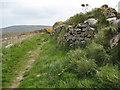 SW3935 : Coast path near Morvah by Philip Halling