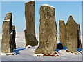 NB2132 : Calanais Stones main circle : Week 2