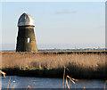 TG4709 : Perry's Mill, Runham Swim by Evelyn Simak