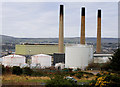 D4201 : Chimneys, Ballylumford power stations, Islandmagee (1) by Albert Bridge
