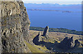 NG4953 : Pinnacles below the east face of the Storr : Week 4