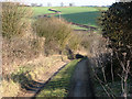 TL5854 : Nearing Lark Hall Corner by John Sutton