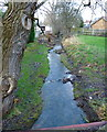 ST5670 : Colliter's Brook north at Ashton Vale by Anthony O'Neil