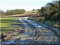 SU9315 : A muddy South Downs Way by Robin Webster