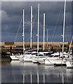 J5082 : Yachts and motorboats, Bangor Marina : Week 7