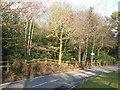 TQ4165 : Barnet Wood Road, BR2 (2) by Mike Quinn