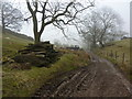 SJ9881 : A muddy track north of Holme Wood by Peter Barr
