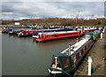 SK5580 : Shireoaks marina : Week 9
