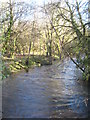 SX1265 : The River Fowey upstream from New Bridge by Rod Allday