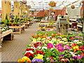 SP0446 : Spring comes to Evesham Garden Centre : Week 9