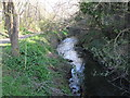 TQ3771 : The Pool River north of Worsley Bridge by Mike Quinn