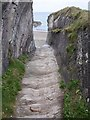 SX1651 : Cutting, Lansallos Cove by Derek Harper