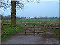 SJ7883 : Gate to Higher House Farm, Ashley. Cheshire by Anthony O'Neil