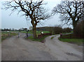 SJ7883 : Left to Higher House Farm, right to Middle House Farm by Anthony O'Neil