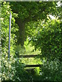 SP9107 : Footpath signpost and stile by Linda Wordsworth