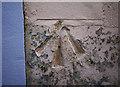 J5182 : Bench Mark, Bangor by Rossographer