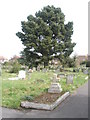 TQ1404 : A guided tour of Broadwater & Worthing Cemetery (78) by Basher Eyre
