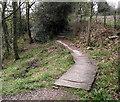 SJ9654 : Duckboarding and steps by Jonathan Kington