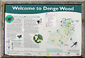 TR1050 : Denge Wood information board by Oast House Archive