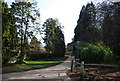 TQ8010 : Path in Alexandra Park by N Chadwick