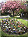 SJ9077 : Springtime in Prestbury by Peter Turner
