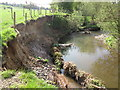 SJ8977 : More bank erosion River Bollin by Peter Turner