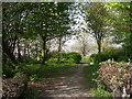 SE1634 : Footpath - Bolton Road by Betty Longbottom