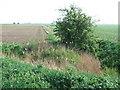 TF3704 : Farmland on Gull Drove, Guyhirn by Richard Humphrey